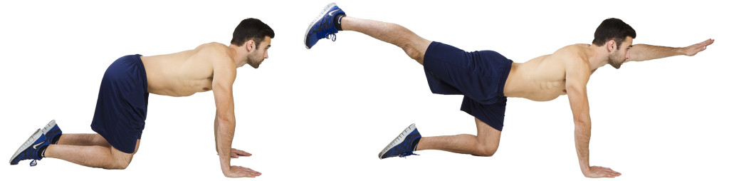 HIIT Exercise: How To Do Bird Dogs